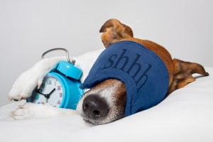 There may be an association between the number of hours you sleep and obesity