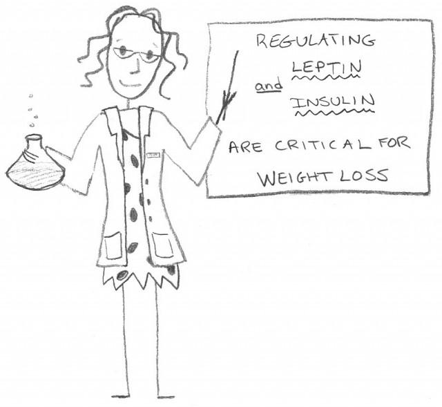 leptin-and-insulin